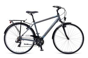 Bicykel Dema AROSA 1.0 grey 19""